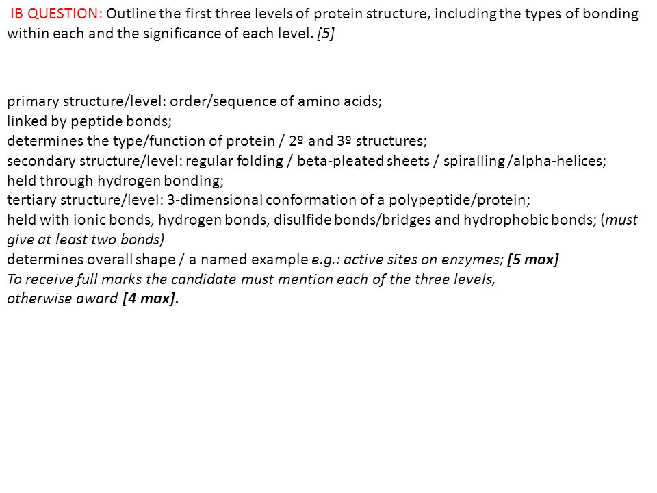 IB QUESTION: Outline the first three levels of protein structure, including the types of bonding within each and the significance of each level. [5]